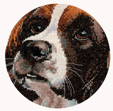 Animal Portraits Cross Stitch