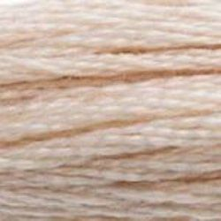 DMC Shade 543 Stranded Cotton Thread