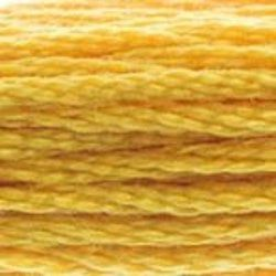 DMC Shade 728 Stranded Cotton Thread