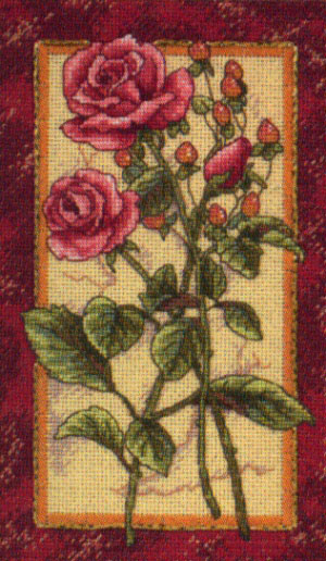 Rose Splendor Cross Stitch Kit