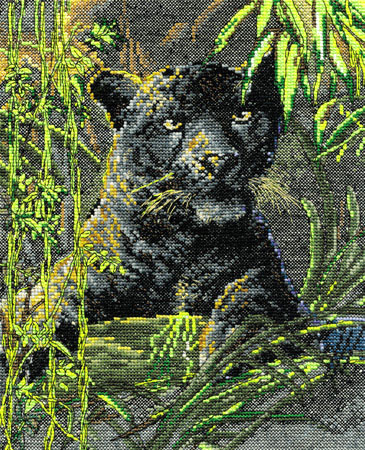Spirit Of The Rain Forest Cross Stitch Kit